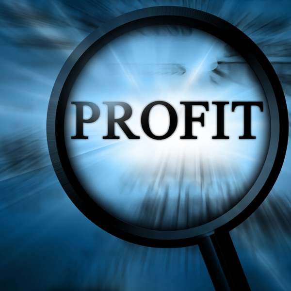 Searching for Profit